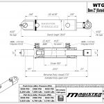 2 bore x 18 stroke hydraulic cylinder, welded tang double acting cylinder | Magister Hydraulics