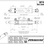2 bore x 22 stroke hydraulic cylinder, welded tang double acting cylinder   Magister Hydraulics